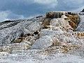Mammoth Springs - panoramio (1).jpg