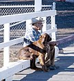 Man's Best Friend, San Simeon CA 1976 (6323212335).jpg