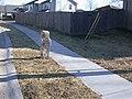 Marker 4 11801 Troost at 3 Trails Corridor (bfa3517b2e42412d980cb3b2c8973833).JPG