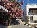 Mastichari, Greece - panoramio (3).jpg