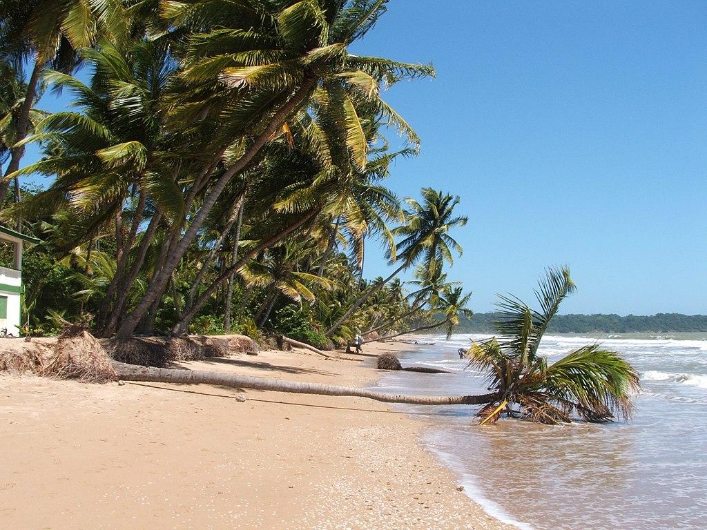 File Mayaro Beach 8 Trinidad Amp Tobago Jpg Wikimedia Commons