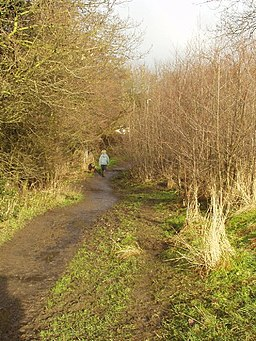 Meanwood Valley Trail - geograph.org.uk - 98650