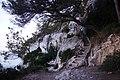 Menorca - 50291425172.jpg