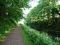 Mid Devon , Grand Western Canal - geograph.org.uk - 1331927.jpg