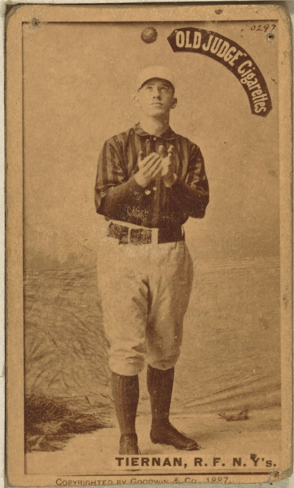 Mike Tiernan baseball card