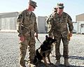 Military Working Dog handler re-enlists 130208-A-VM825-028.jpg