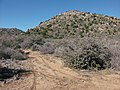 Mohave County, AZ, USA - panoramio (45).jpg