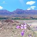 Montagne région ErRich Maroc.jpg