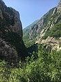 Moračos kanjonas.jpg