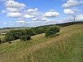 Morgan's Hill - geograph.org.uk - 1564963.jpg