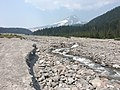 Mount Hood White River 2017.jpg