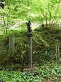 Mount Takao - Trail 1 (9406596253).jpg