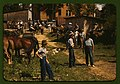 """Mountaineers and farmers trading mules and horses on """"Jockey St.,"""" near the Court House, Campton, Wolfe County, Ky. LCCN2017877560.jpg"""
