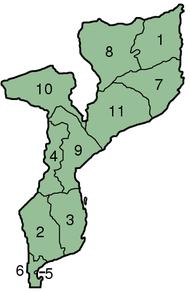 Mappa del Mozambico con le province in evidenza