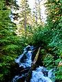 Mt. Baker-Snoqualmie National Forest (9290039303).jpg
