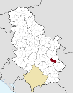 Location of the municipality of Svrljig within Serbia