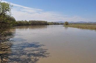 Mureș (river) - Image: Muresul La Ilia (6)