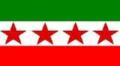 NPPflag.png
