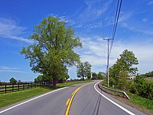 A gently curving road under a blue sky with some cirrus clouds. There are large trees on the left of the road and fields with wooden fences on both sides.