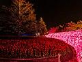Nabana no Sato (Winter Illumination), Kuwana, Mie, Japan, なばなの里, 三重, 三重県 - panoramio.jpg