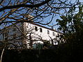 Naked branches (4018153381).jpg