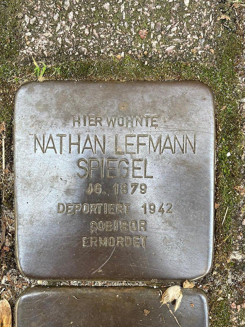 Nathan Spiegel.jpg