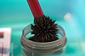 National Museum of Crime and Punishment - Graphite magnet brush (3408590650).jpg