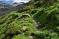 Nationalpark Hohe Tauern - Gletscherweg Innergschlöß - 57 - Abstieg über den Fuß des Vorderen Kesselkopfs.jpg