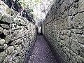 Niton Tunnels 05.jpg