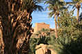 Nkob-Morocco-9.jpg