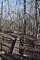 North Trail Lee Tartt Nature Preserve 2.jpg