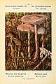 Nouvel atlas de poche des champignons comestibles et vénéneux (Pl. 18) (7831140668).jpg