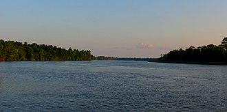 Ogeechee River - The Ogeechee River near Savannah, Georgia