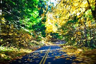 Oregon Route 242 - Image: Oregon Route 242