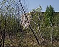 Orichevsky District, Kirov Oblast, Russia - panoramio (1).jpg