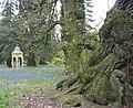 Ornamental structure in woodland walk, Capesthorne Hall - geograph.org.uk - 440809.jpg