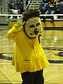 Oski at women's volleyball, SJSU at Cal 2009-09-12 4.JPG