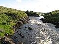Owenmore rapids - geograph.org.uk - 1465964.jpg