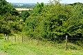 Oxfordshire Way - geograph.org.uk - 1435248.jpg