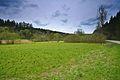 Přírodní rezervace Nebrová, okres Ilava (10).jpg