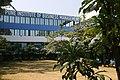 PIBM Pune College.jpg