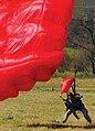 Parachute school -k.jpg
