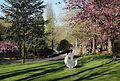 Parc Mouscron J7.jpg
