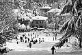 Parco di Villa Spada con la neve.jpg
