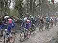 Paris-Roubaix 2019 Bois Wallers-Arenberg 5.jpg