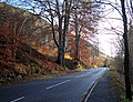 Pass of Killiecrankie, B8079 - geograph.org.uk - 281652.jpg