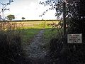 Path across the fields - geograph.org.uk - 1028289.jpg