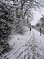 Pavement, Bramley Road, London N14 - geograph.org.uk - 1145401.jpg