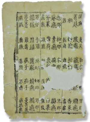 Pearl in the Palm - Page from the Pearl in the Palm found at the Northern Mogao Caves