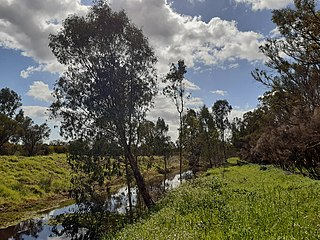 Peel Main Drain Drainage canal in Western Australia